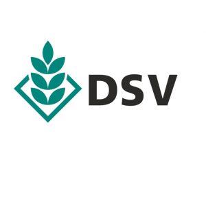 dsv logo e1564405507368 300x294 - dsv-logo